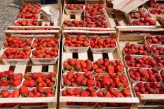 Münstermarkt Freiburg-Erdbeeren