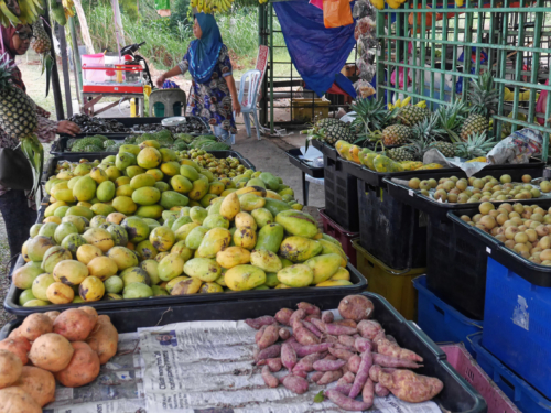 Mangos am Strassenstand Malakka