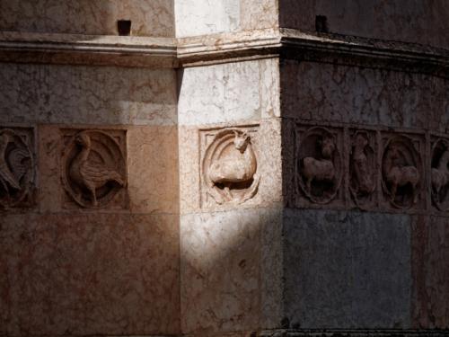 Parma Baptisterium